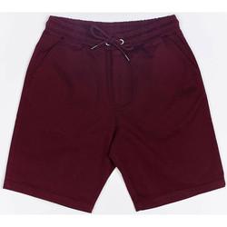 Vêtements Homme Shorts / Bermudas Wrung Short  Shark rouge bordeaux