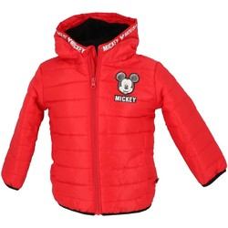Vêtements Enfant Doudounes Disney Mickey rouge doudoune bb Rouge
