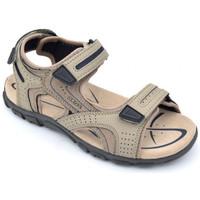 Chaussures Homme Sandales et Nu-pieds Geox u s.strada Beige