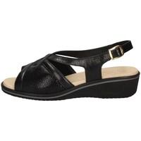 Chaussures Femme Sandales et Nu-pieds Susimoda 2701/14 NOIR
