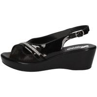 Chaussures Femme Sandales et Nu-pieds Susimoda 240543/43 NOIR