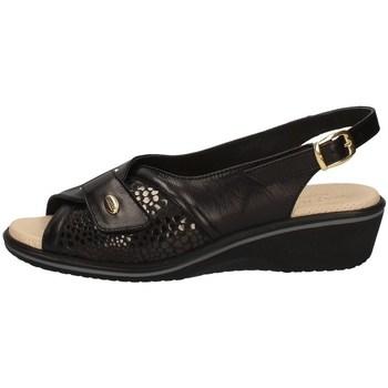 Chaussures Femme Sandales et Nu-pieds Susimoda 2227/14 NOIR