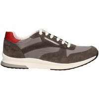 Chaussures Homme Baskets basses Lumberjack SM87012-001 GRIS