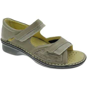 Chaussures Femme Sandales et Nu-pieds Calzaturificio Loren LOM2834to tortora
