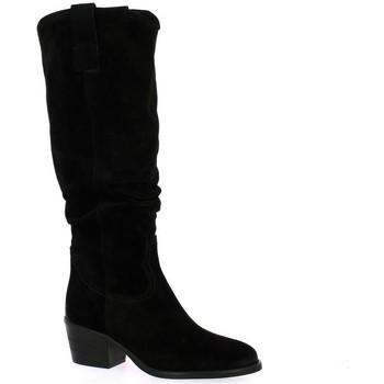 Chaussures Femme Bottes ville Gaia Bottes cuir velours Noir