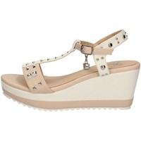 Chaussures Femme Sandales et Nu-pieds Laura Biagiotti 6167 BLANC