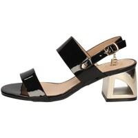 Chaussures Femme Sandales et Nu-pieds Laura Biagiotti 6010 NOIR