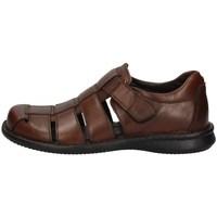 Chaussures Homme Sandales et Nu-pieds Zen 077807 MARRON