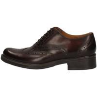 Chaussures Femme Derbies Campanile 5022 MARRON