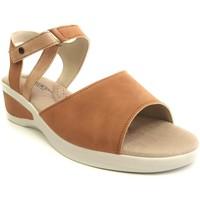 Chaussures Femme Sandales et Nu-pieds Arcopedico MERLYN NUBUCK BEIG Sandalias