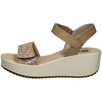 Chaussures Femme Sandales et Nu-pieds IgI&CO 51781/11 PLATINE