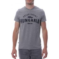 Vêtements Homme T-shirts manches courtes Hungaria H-16TLMOBOLV Gris