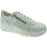 Chaussures Femme Baskets basses Melluso MW09730GDbia bianco