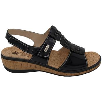 Chaussures Femme Sandales et Nu-pieds Susimoda ASUSIM2901nero nero