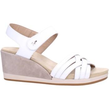 Chaussures Femme Sandales et Nu-pieds Benvado PALMA Multicolore