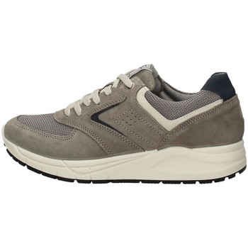 Chaussures Homme Baskets basses Imac 503010 Gris
