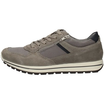 Chaussures Homme Baskets basses Imac 502900 BASKETS Homme Gris