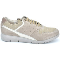 Chaussures Homme Baskets basses Impronte BASKETS HOMME CANAL SUÈDE ET TISSU Taupe