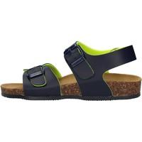 Chaussures Garçon Sandales et Nu-pieds Gold Star - Sandalo blu 8805A BLU