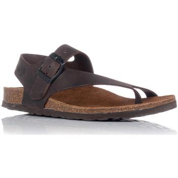 Chaussures Femme Sandales et Nu-pieds Interbios 7162 Marron