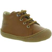 Chaussures Garçon Boots Naturino & Falcotto COCOON BOY Marron