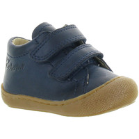 Chaussures Garçon Boots Naturino & Falcotto COCOON BOY VELCRO Bleu