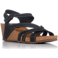 Chaussures Femme Sandales et Nu-pieds Interbios 5633 Noir