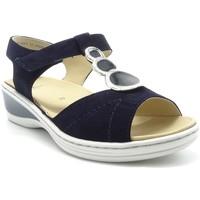 Chaussures Femme Sandales et Nu-pieds Ara 39055 MARINE