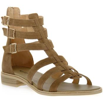Chaussures Femme Sandales et Nu-pieds NeroGiardini NERO GIARDINI  405 VELOUR CASTORO Beige