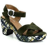 Chaussures Femme Sandales et Nu-pieds Adige RACHEL KAKI