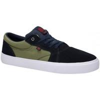 Chaussures Homme Chaussures de Skate Element WASSO primo Bleu