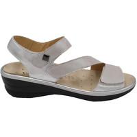 Chaussures Femme Sandales et Nu-pieds Calzaturificio Valconfort AVALCOM588gr grigio