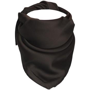 Accessoires textile Femme Echarpes / Etoles / Foulards Chapeau-Tendance Foulard polysatin uni Marron
