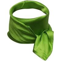Accessoires textile Femme Echarpes / Etoles / Foulards Chapeau-Tendance Foulard polysatin uni Vert pomme