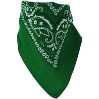 Accessoires textile Echarpes / Etoles / Foulards Chapeau-Tendance Bandana uni coton Vert