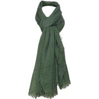 Accessoires textile Femme Echarpes / Etoles / Foulards Chapeau-Tendance Cheche froissé uni Vert kaki