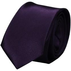 Vêtements Homme Cravates et accessoires Chapeau-Tendance Cravate unie slim Violet