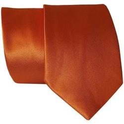 Vêtements Homme Cravates et accessoires Chapeau-Tendance Cravate unie soie Orange