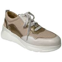 Chaussures Femme Baskets basses Mlv Basket aurea03 Beige