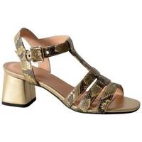 Chaussures Femme Sandales et Nu-pieds Geox Sandale-d seyla san mb jaune