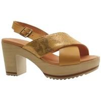 Chaussures Femme Sandales et Nu-pieds Mkd Sandale norden jaune