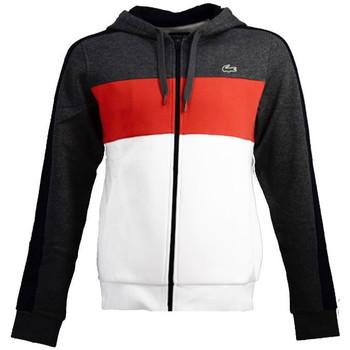 Vêtements Homme Sweats Lacoste Sweats Orange