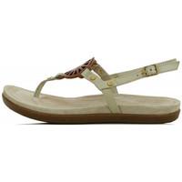 Chaussures Femme Sandales et Nu-pieds UGG Sandale  Ayden Ecru