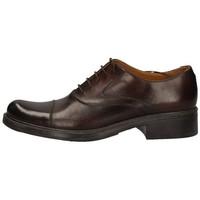 Chaussures Femme Derbies Campanile 4970 MARRON