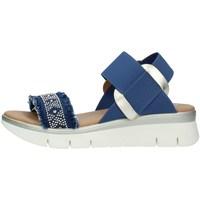 Chaussures Femme Sandales et Nu-pieds The Flexx D2016-42 SANDALS femme JEANS / PLATINE JEANS / PLATINE