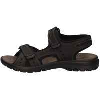 Chaussures Homme Sandales et Nu-pieds Imac 503370 NOIR