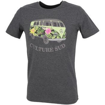 Vêtements Homme T-shirts manches courtes Culture Sud Hercule vans tee grisfonce chine Gris anthracite chiné
