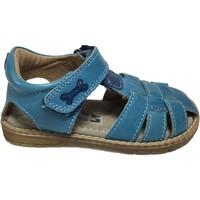 Chaussures Garçon Sandales et Nu-pieds Stones and Bones DOCU Turquoise