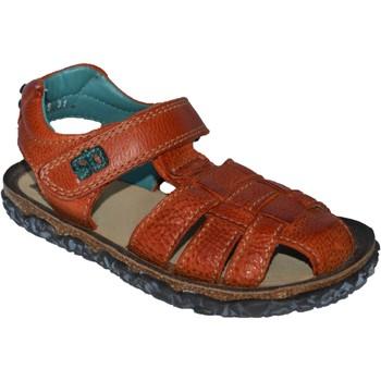 Chaussures Garçon Sandales et Nu-pieds Stones And Bones NATAN Orange