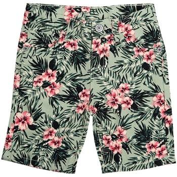 Vêtements Garçon Shorts / Bermudas Interdit De Me Gronder TANZANIE Multicolore